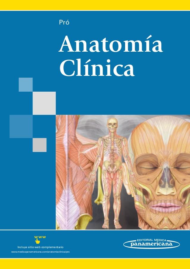 Atractivo Anatomía Clínica Por Snell Componente - Anatomía de Las ...