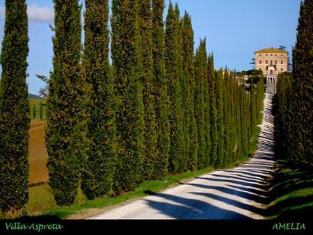 италия  город амелия