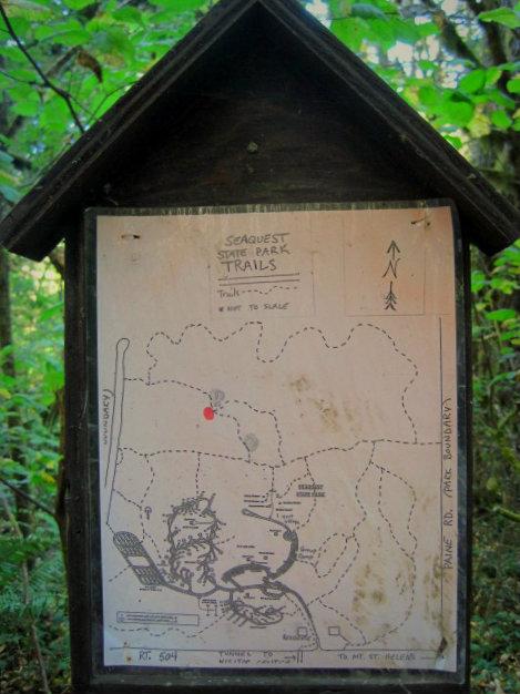 Seaquest State Park Wa Camp Jackalope