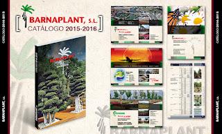 plantas y árboles ornamentales, arbustos, palmáceas, coníferas, plantas vivaces, cactáceas, plantas únicas y ejemplares, plantas exóticas para los profesionales del paisajismo y la jardinería.