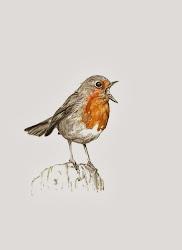 Robin for Truus