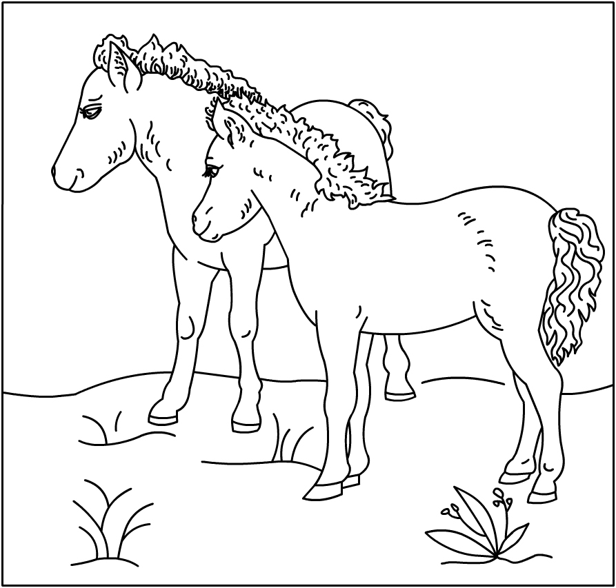 free coloring pages of baby horses