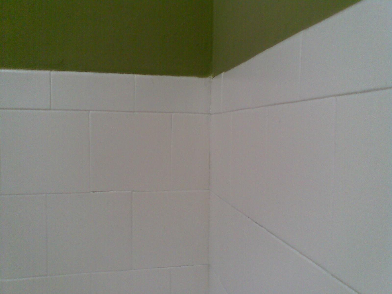 Detalhes dos revestimentos pintados de branco e o restante das paredes  #404618 1600 1200