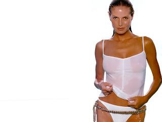 Celebrity Heidi Klum Desktop Wallpapers Gallery