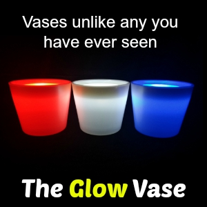 The Glow Vase
