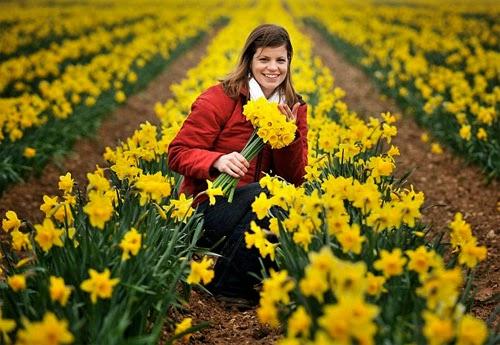 The best flower fields in the world