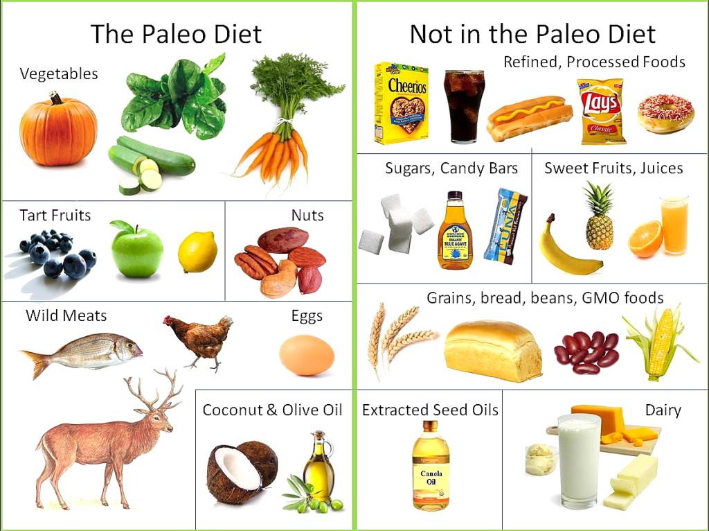 Day Diet Plan - Weight Loss Diet Plan for Vegetarians: Paleo diet ...