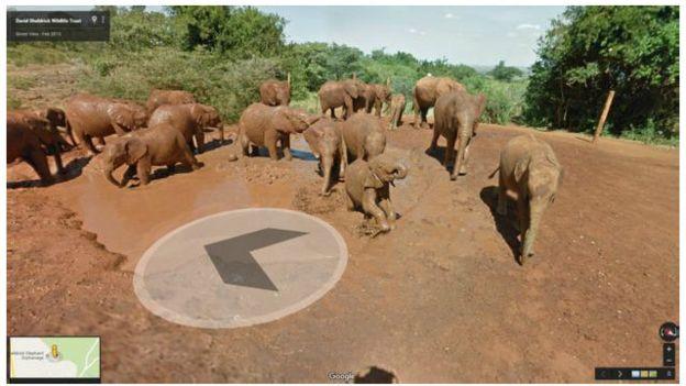 Taman Nasional Samburu di Kenya Masuk Peta Google Street View