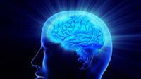 Risk Factors that Contribute Alzheimer's Disease   Alzheimer's Reading Room