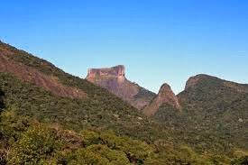 Turismo no Rio de Janeiro na Floresta da Tijuca