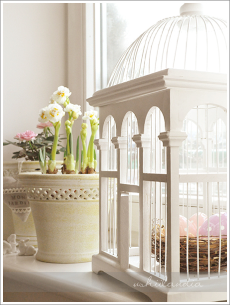 drewniana klatka dla ptaków / vintage wooden birdcage