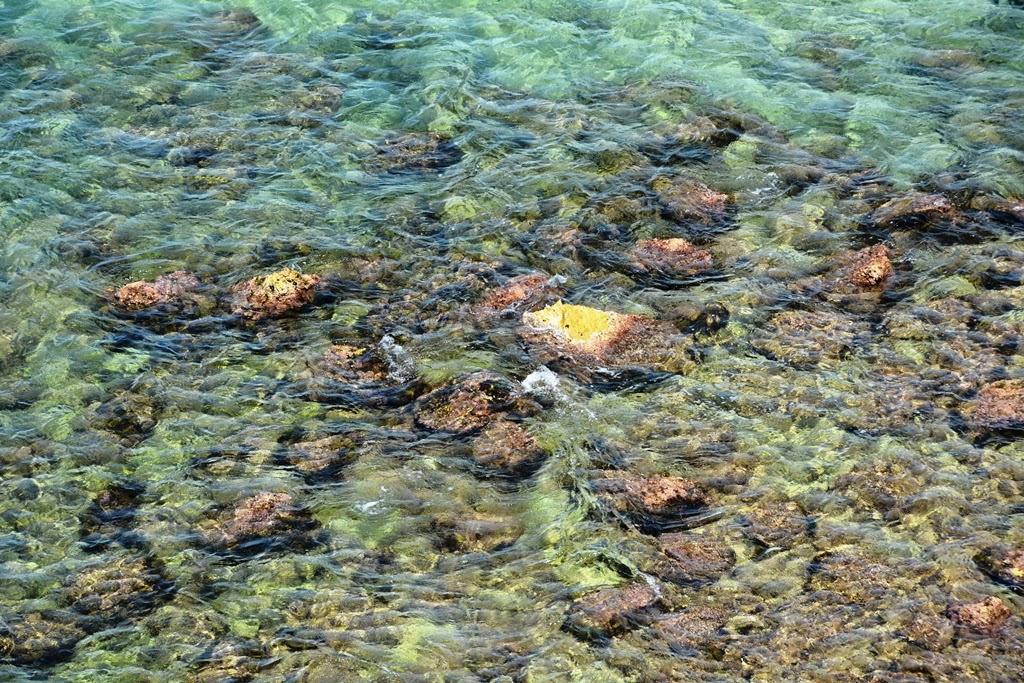 Salou Beach clear water