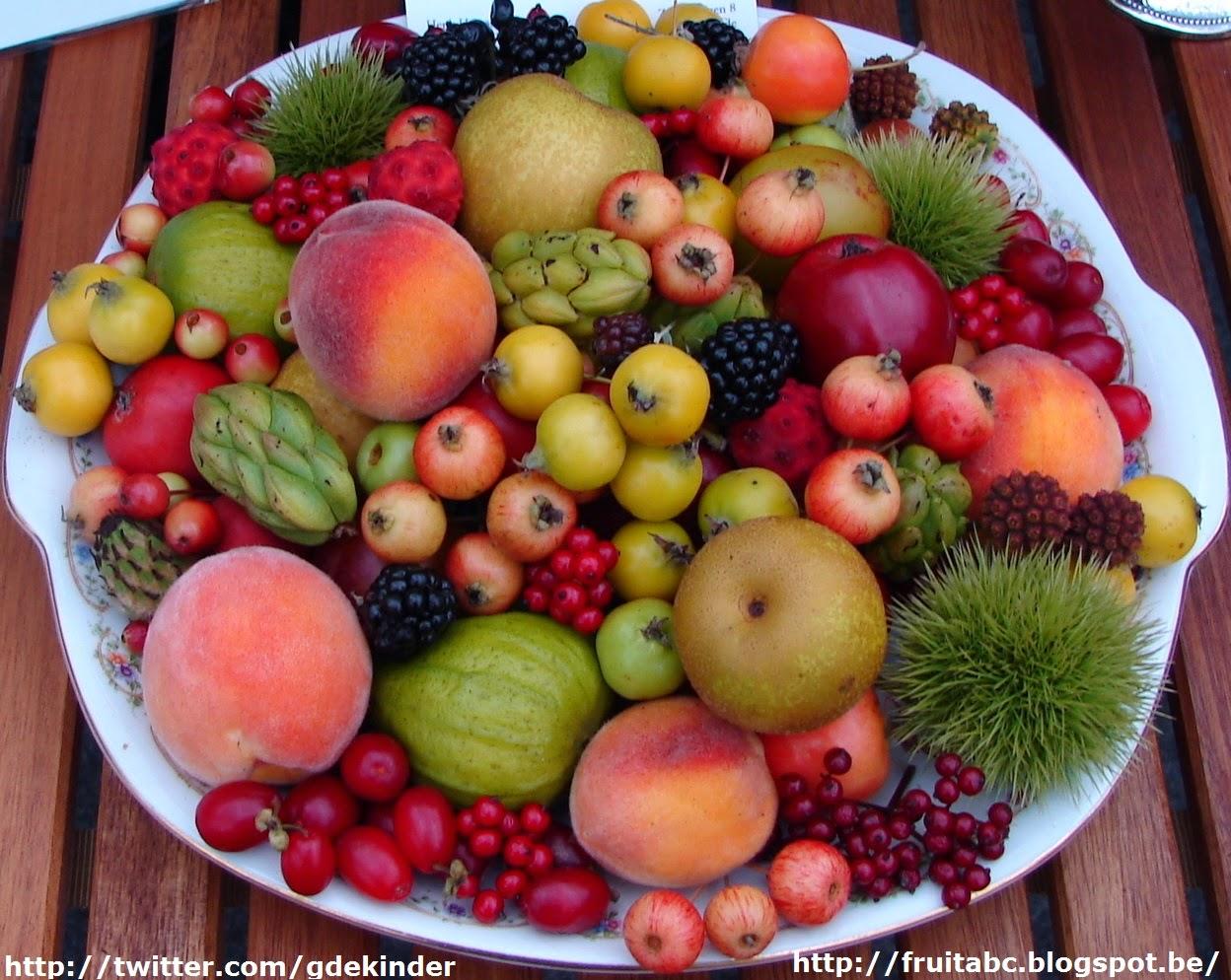 alle fruitsoorten