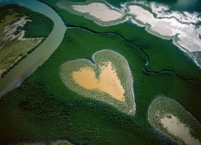 Beautiful Bird's-Eye Photos by Yann Arthus-Bertrand Seen On www.coolpicturegallery.us