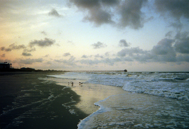 Atlantic Beach at dawn, sand pipers