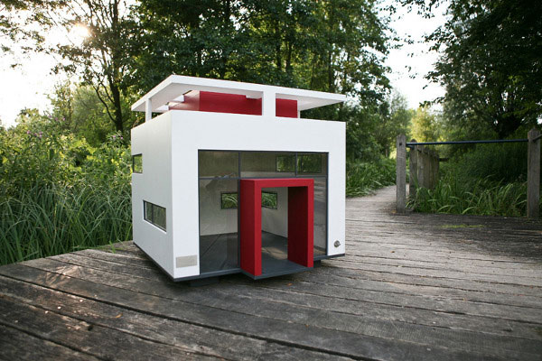 House designs for Dog