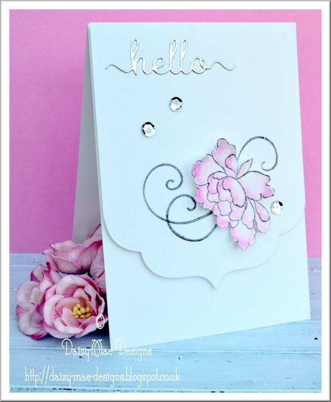 flower, pink, LIM,CAS