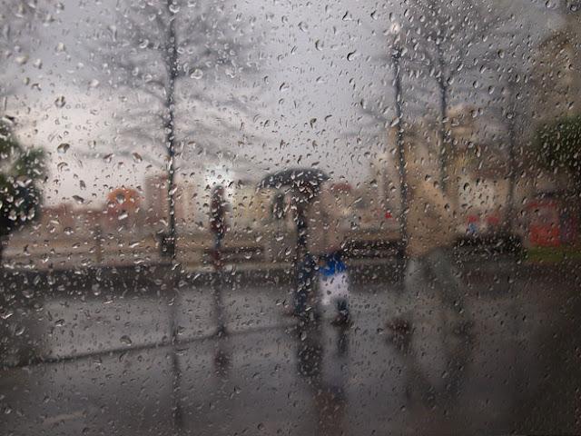 día de lluvía 3, by Pablo Basagoiti Brown / Basagoitiyyo