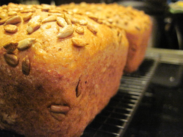 Toasted Sunflower Whole Wheat Bread Recipe