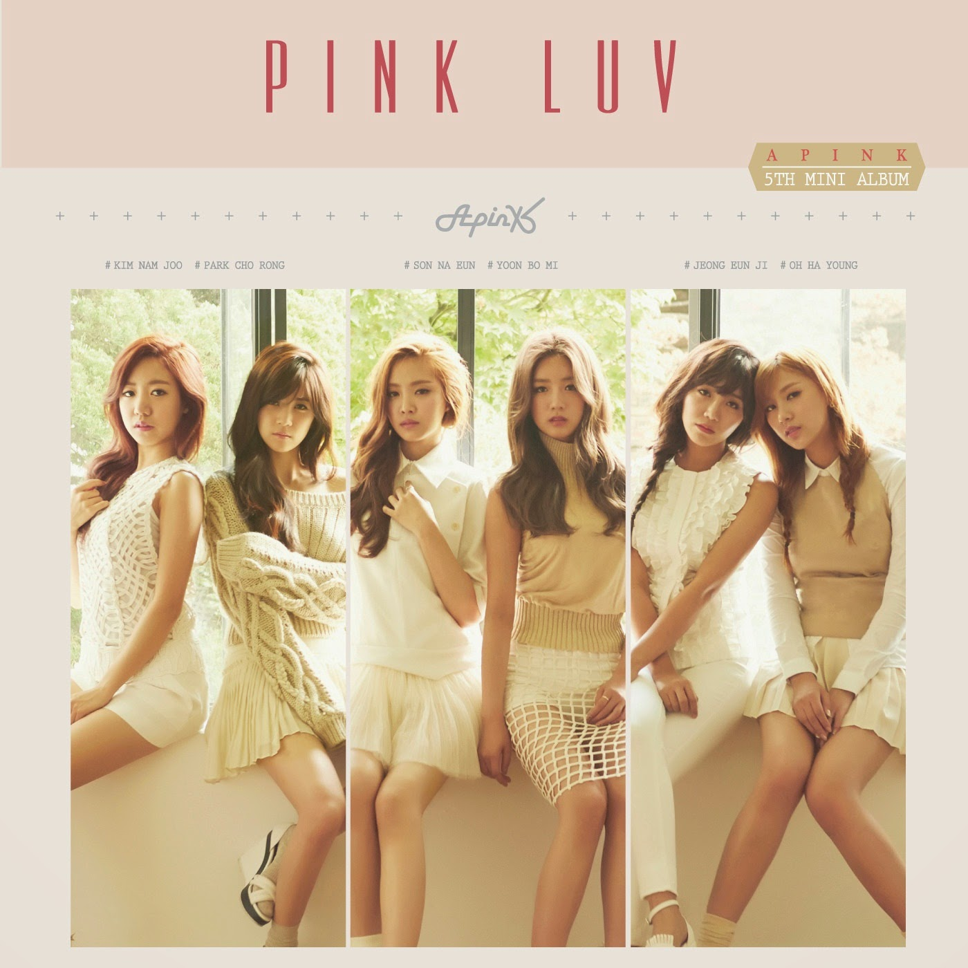 A Pink LUV lyrics cover