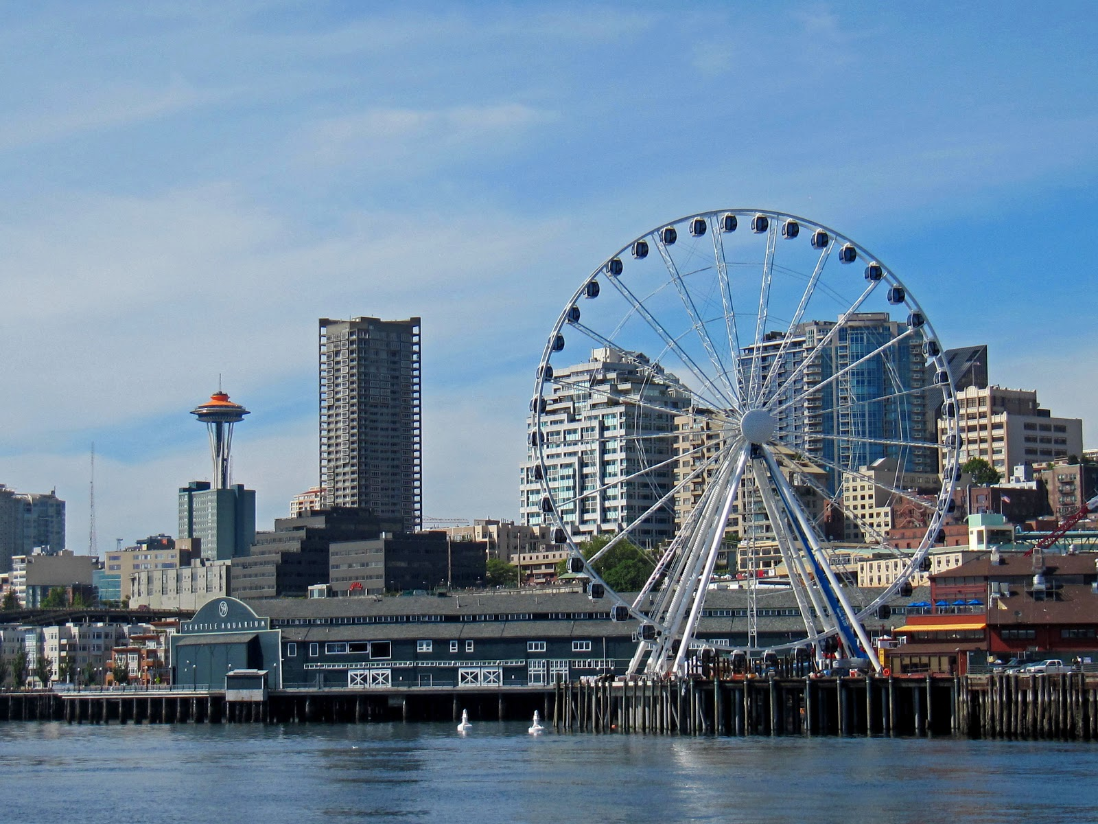 Redefining The Face Of Beauty Top 10 Things To Do In Washington