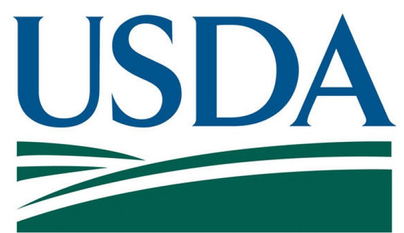 USDA Internship Program and Jobs