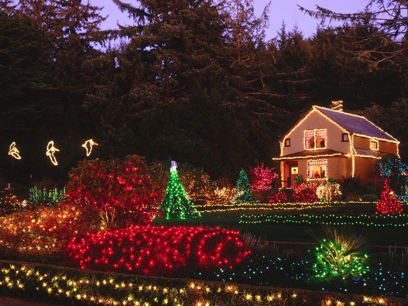 http://2.bp.blogspot.com/-Pd5hkCbfXyw/T7Jh0IOxdYI/AAAAAAAACy8/8O4dkcL4E6Q/s1600/Christmas+Lights+2.jpg
