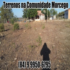 Terrenos no Morcego