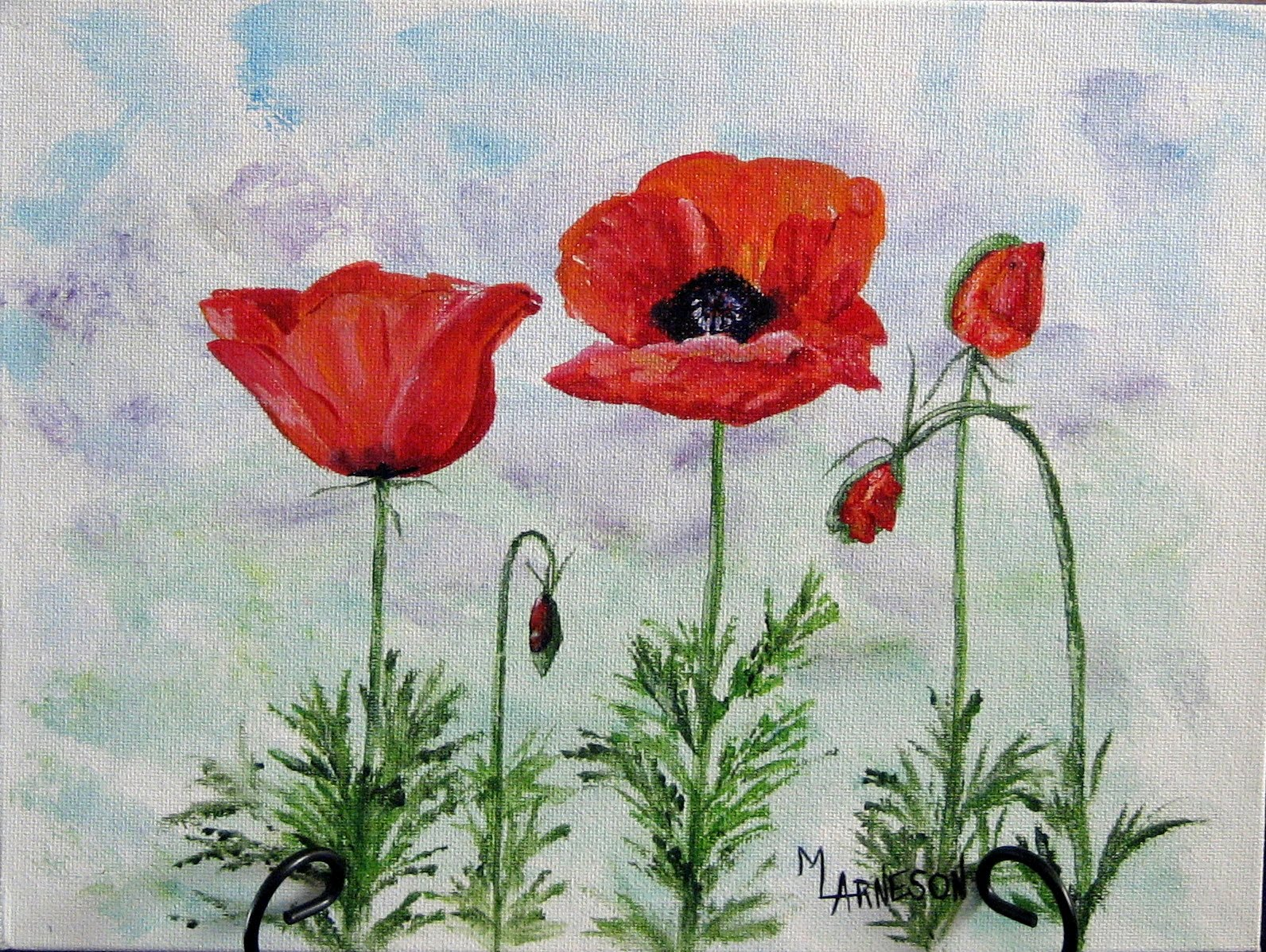 Daily painters of colorado poppies acrylic painting by - How to paint poppy flowers ...