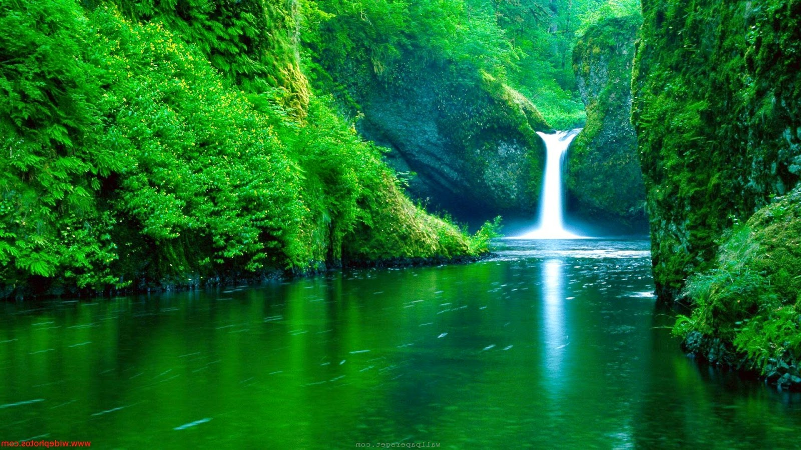 amazing nature wallpapers beautiful nature hd live