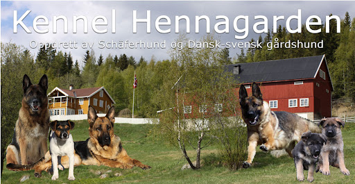 Kennel Hennagarden