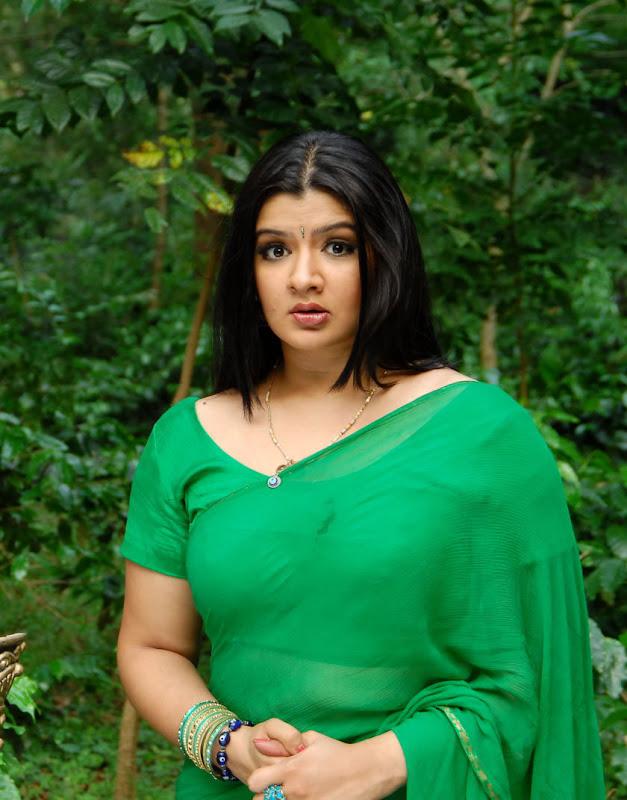Actress Aarthi Agarwal Stills Gallery hot photos