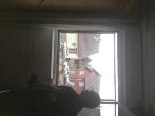 Katzennetz Fenster ohne bohren