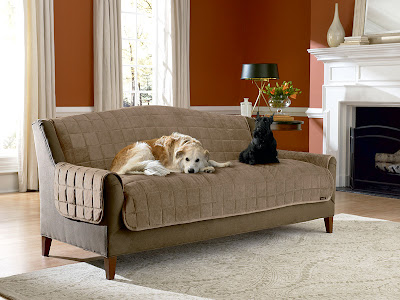Sure Fit Slipcovers Don T Let Pet Hair Take Over Your House