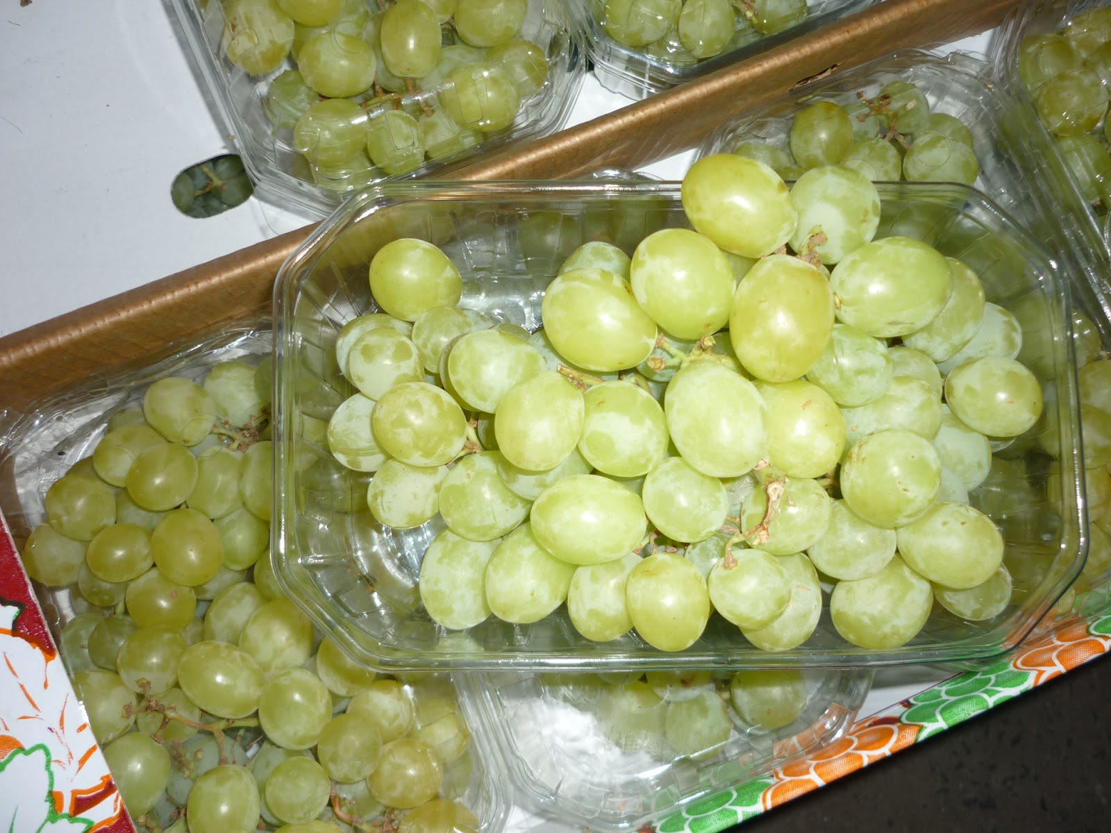 yellow_grapes_suppliers