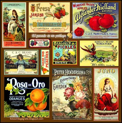 collage vintage hecho con antiguas etiquetas de publicidad
