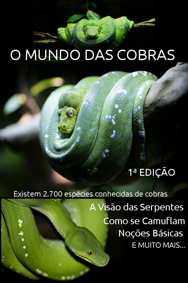 E BOOK O Mundo das Cobras 1ª Ed.