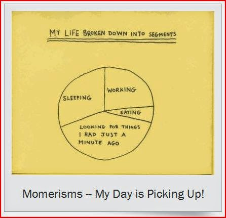momerisms day broken down into segments