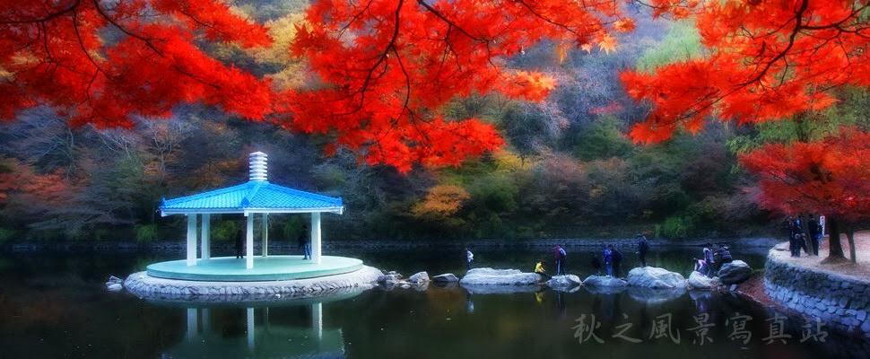 秋之風景寫真站
