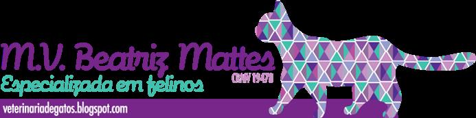 M.V. Beatriz Mattes