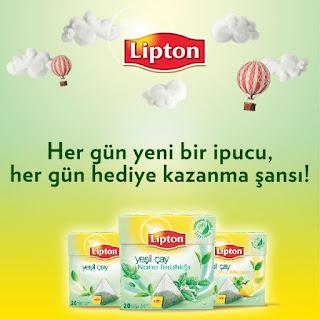 lipton segmentation Segmentation lipton dissertations et fiches de lecture cas lipton du chiffre d'affaires total du groupe créée en 1893 par sir thomas lipton, d'abord une chaîne de magasins puis marque indépendante, elle fait aujourd'hui partie du groupe unilever.