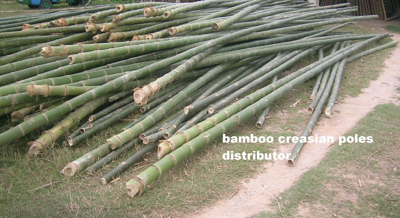 Quality bamboo and asian thatch poles