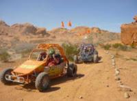 Desert Dune Buggy Tours