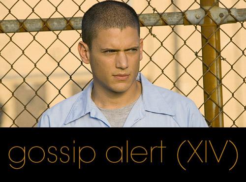 Gossip Alert (XIV): Cotilleos Veraniegos