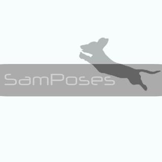 Sam Poses