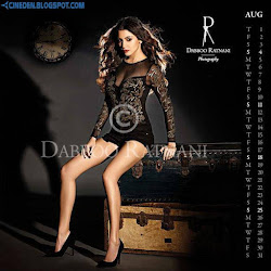 Aditi Rao Hydari on Dabboo Ratnani 2013 Calendar Hot Celebrities Photoshoot Stills