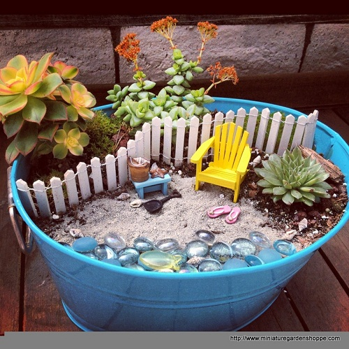 mini jardim de suculentas passo a passo : mini jardim de suculentas passo a passo:Beach Fairy Garden Ideas