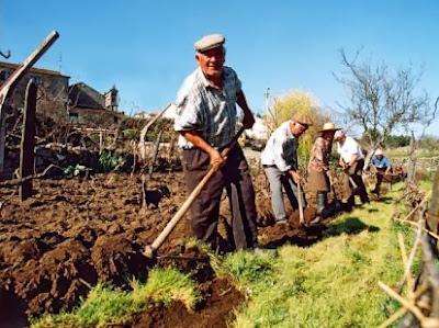 [Imagem: agricultura_trabalhadores.jpg]