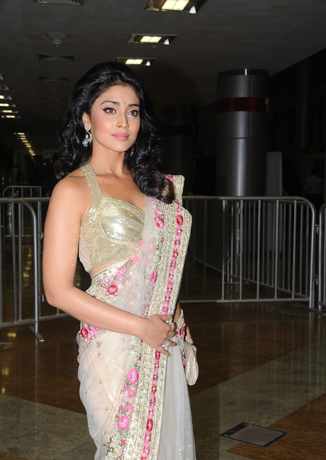 Shriya saran in a designer saree