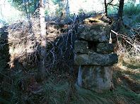 Construccions en mig del bosc
